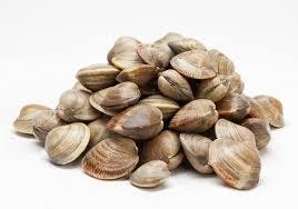 littleneckclams